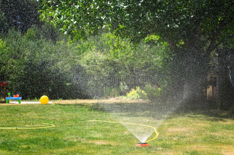 Irrigation System Watering the green lawn, on a sunny summer day royalty free stock photo