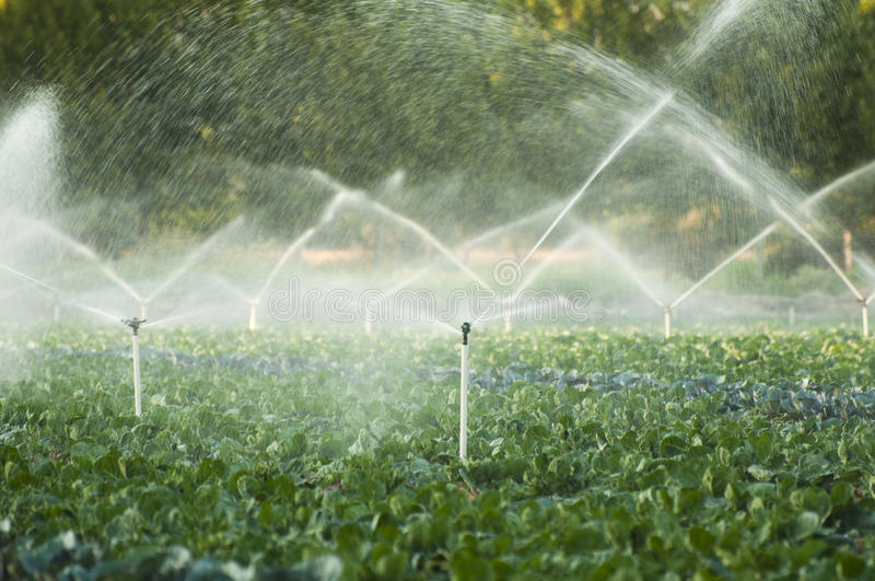 Irrigation systems stock images