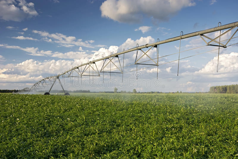 Irrigator över ett potatisfält, Midwest, USA arkivfoton