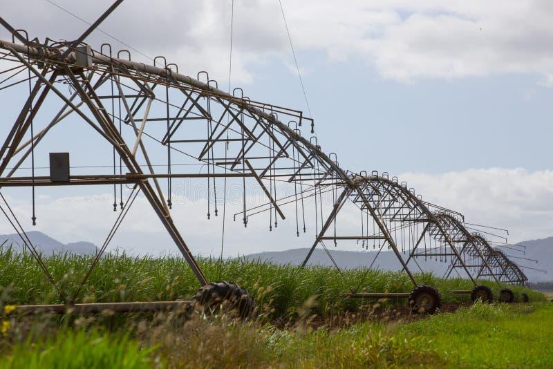 Irrigator de arriba del espray - vista lateral imagen de archivo libre de regalías