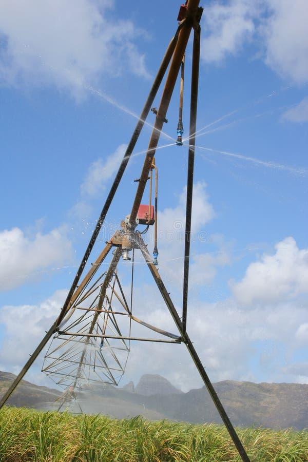 Download Irrigazione #2 immagine stock. Immagine di rurale, spruzzo - 214021