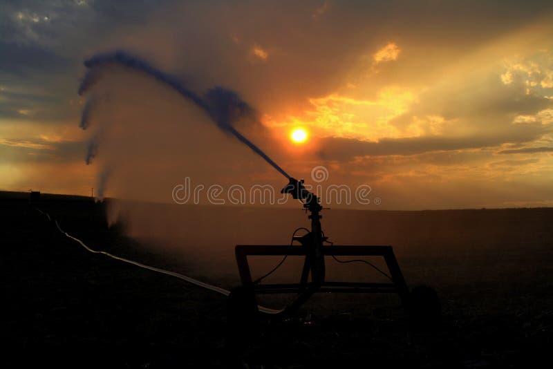 Irrigazione allo stimolo del sole fotografia stock