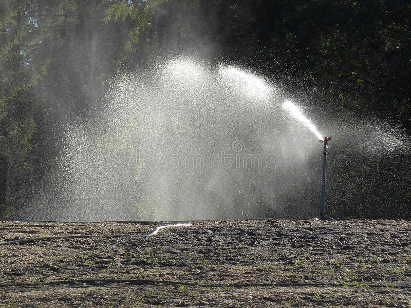 Irrigazione automatica fotografie stock