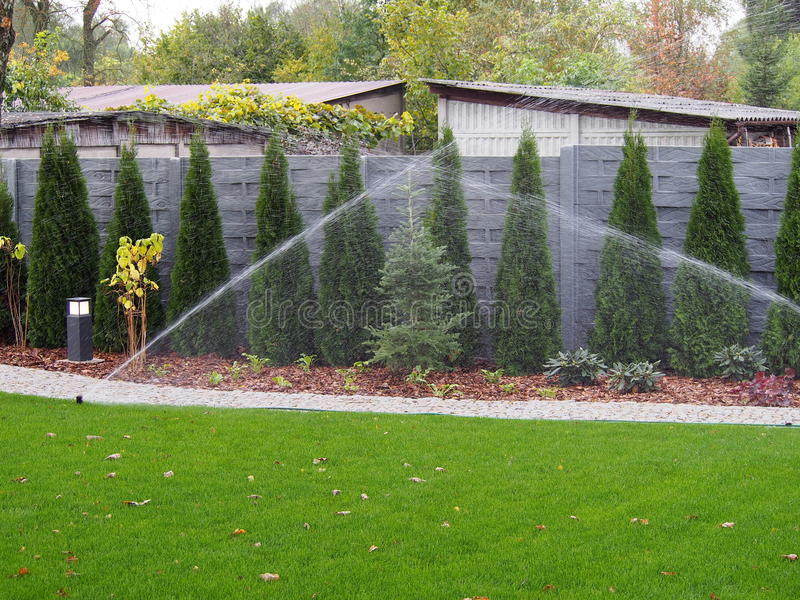 Irrigazione del giardino, spruzzatori funzionanti immagini stock libere da diritti