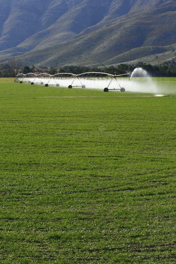 Irrigazione dello sbarco immagine stock
