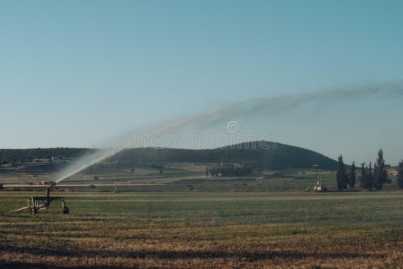 Irrigazione o agricoltura e concetto di azienda agricola Acqua dello spruzzo dello spruzzatore del perno sul campo verde Impianto fotografie stock