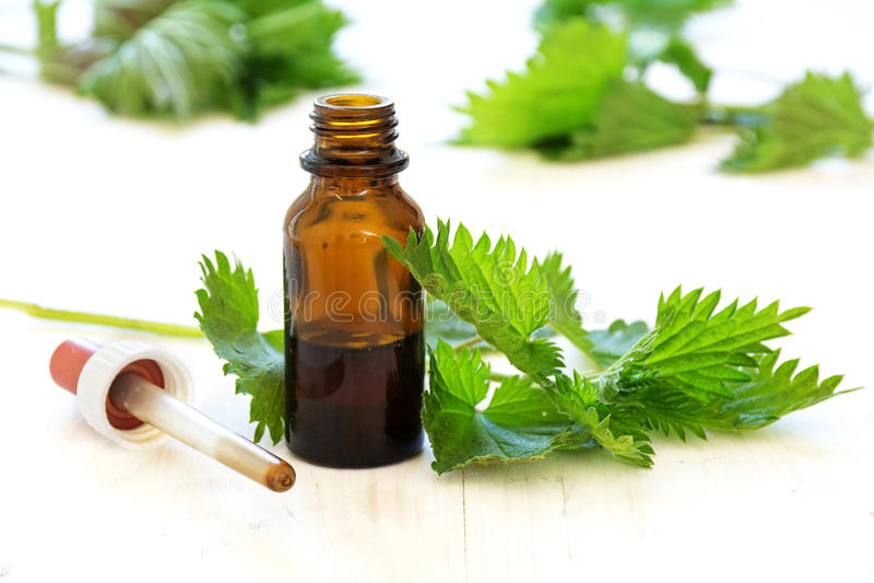 Irriti la tintura in una piccola bottiglia e nelle foglie fresche su legno bianco fotografie stock