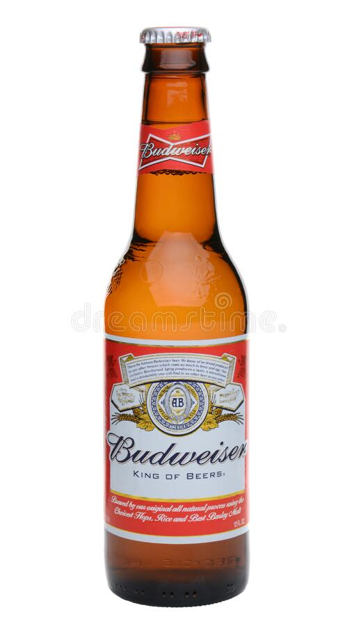 Single Budweiser Bottle. IRVINE, CA - MAY 27, 2014: A single bottle of Budweiser on white. From Anheuser-Busch InBev, Budweiser is one of the top selling royalty free stock image