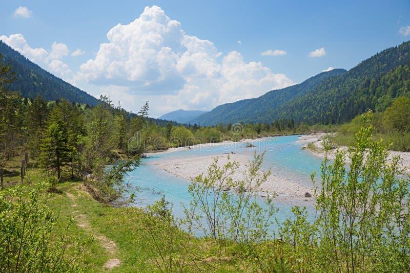 Isar flod nära vorderriss, naturlig livsmiljö för fåglar och alpint royaltyfri foto