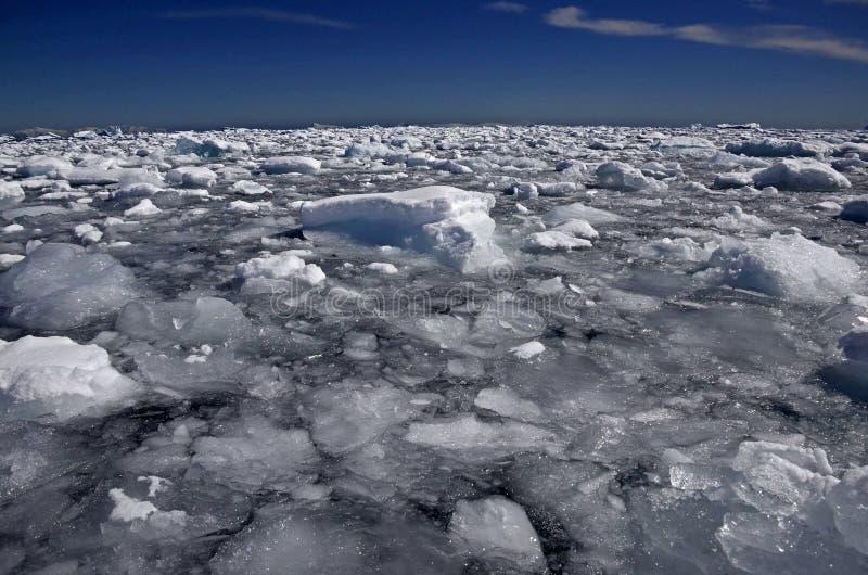 Isberg och oblyg is, Antarktis arkivbild