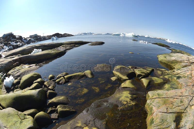Isberg på det arktiska havet i Grönland royaltyfri bild