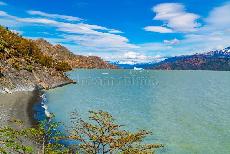 Isberget bryter av Grey Glacier och att sväva i Grey Lake i den Torres del Paine nationalparken royaltyfria foton
