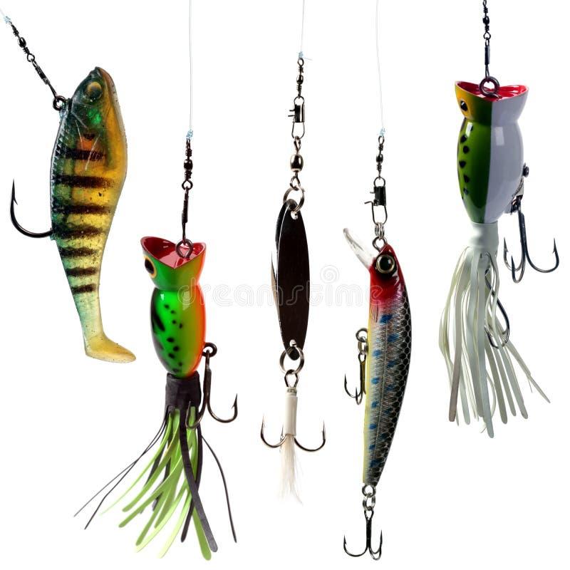 Iscas de pesca ilustração do vetor