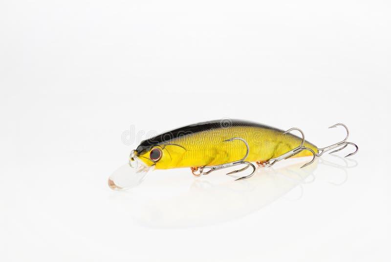 Iscas e engrenagem de pesca para travar peixes predatórios imagens de stock