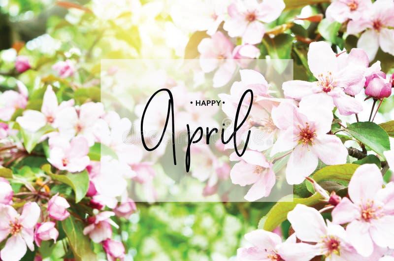Iscrizione aprile felice Stagione floreale di tempo di molla dello sfondo naturale fotografia stock
