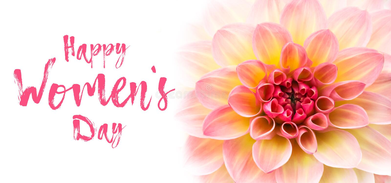Iscrizione felice del messaggio di testo di giorno di Women's e foto di rosa, della dalia del fiore fresco giallo e bianco macr fotografia stock