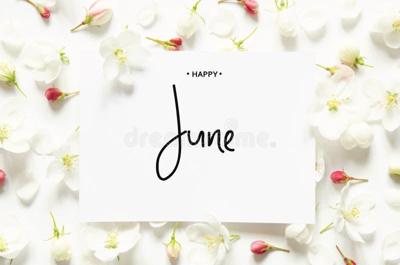 Iscrizione giugno felice Fiori freschi di estate Vista superiore immagine stock