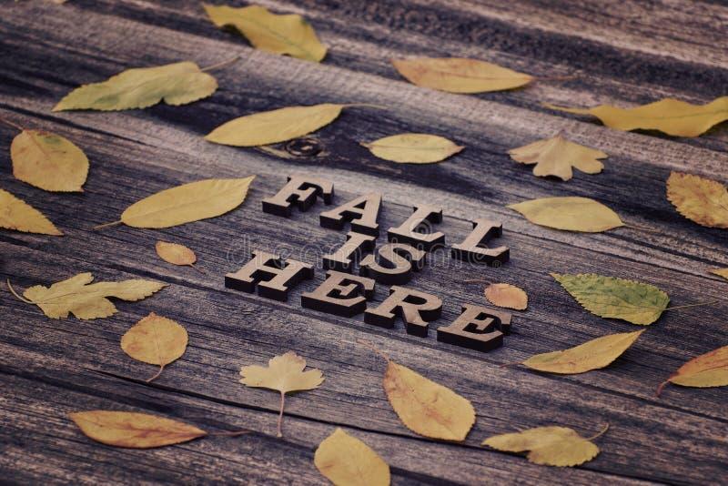 iscrizione La caduta è qui nelle lettere di legno Pagina della prateria gialla fotografia stock