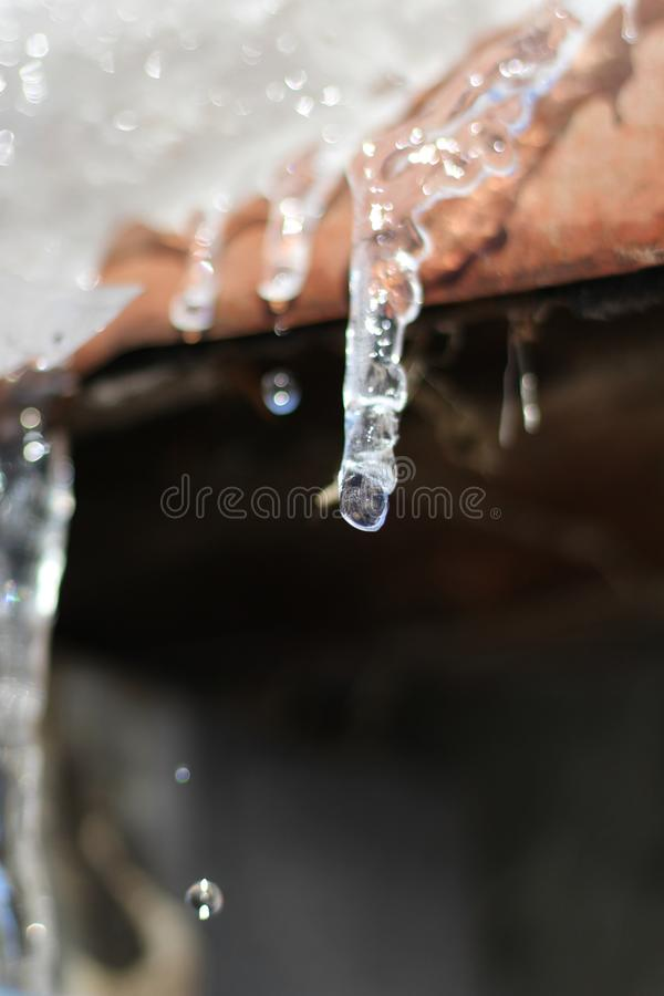 The ise iciles are melting under the warm rays of the sun and dripping drops of water. Macro. stock photos