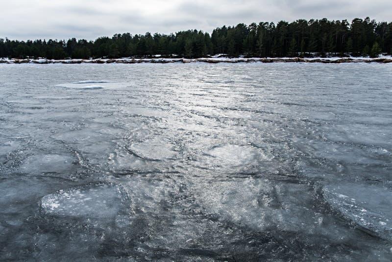Isen på Lake Ladoga Det djupfrysta vattnet Texturen på isen arkivbild