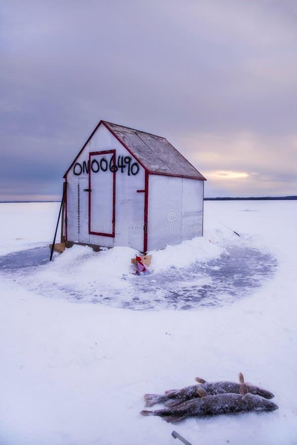 Isfiskekoja fotografering för bildbyråer