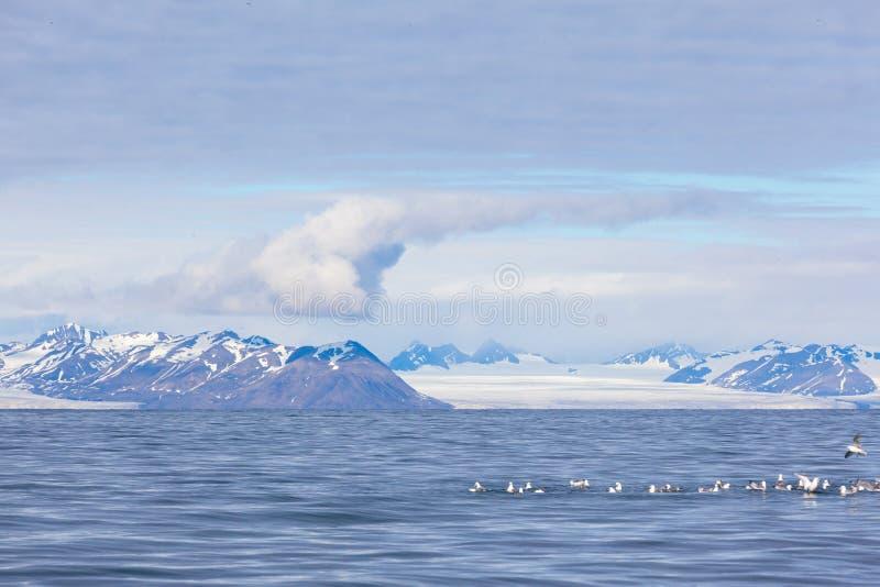 Isfjord i Svalbard i Spitsbergen Härlig fjärd på bakgrunden av snöig berg fotografering för bildbyråer