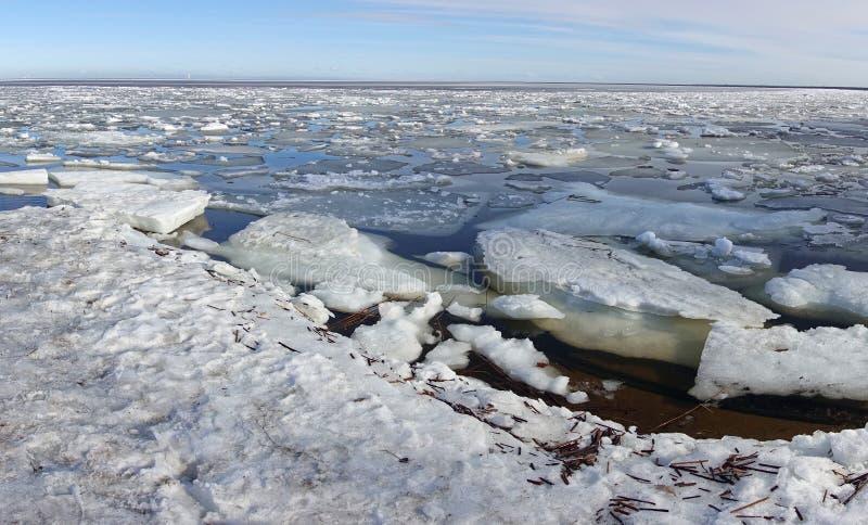 Isflockar med raviner på ytan av Finska viken nära Sankt Petersburg, Ryssland arkivfoto