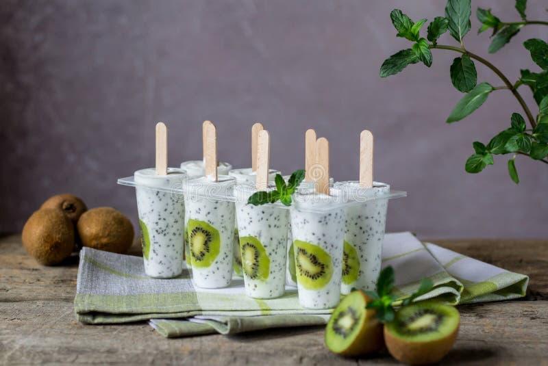 Isglassar för kiwiyoghurtglass Sund efterrätt Hemlagad produkt Blåtthav, Sky & moln royaltyfri bild