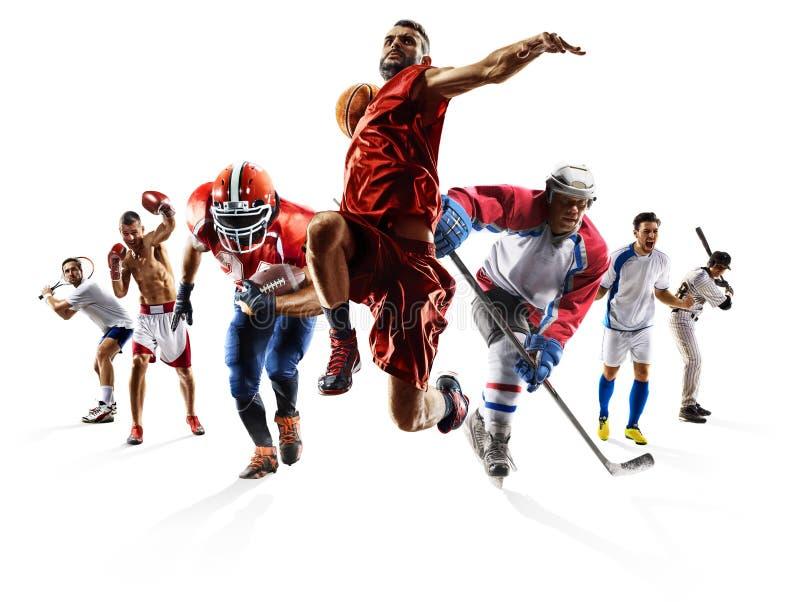 Ishockey etc. för baseball för basket för amerikansk fotboll för fotboll för sportcollageboxning royaltyfri foto