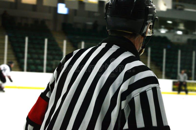 Ishockeydomare royaltyfri foto