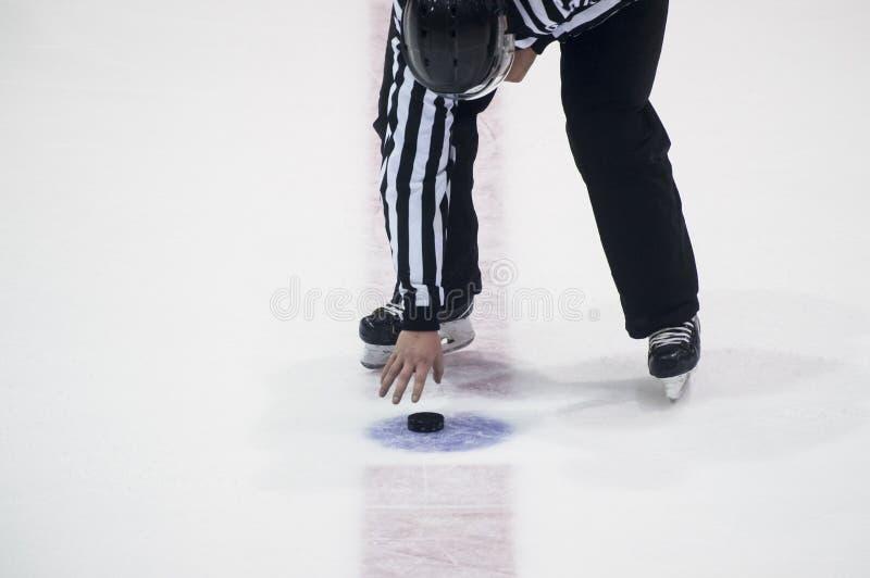 Ishockeydomare en puck i din hand arkivbild