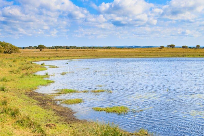 Isimangaliso-Sumpfgebiet-Parklandschaft lizenzfreie stockfotos
