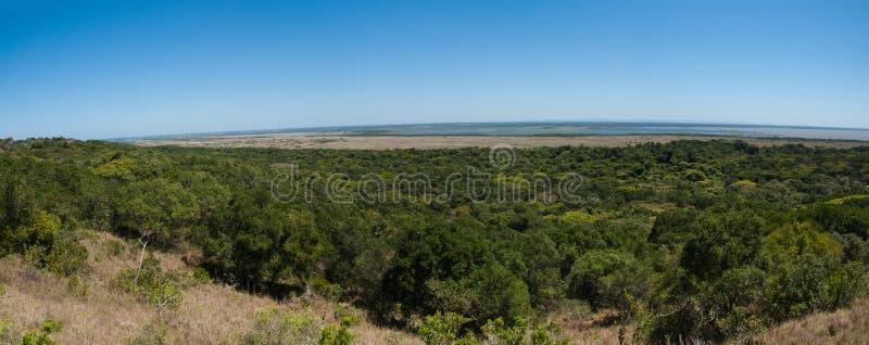 ISimangaliso våtmark parkerar royaltyfri foto