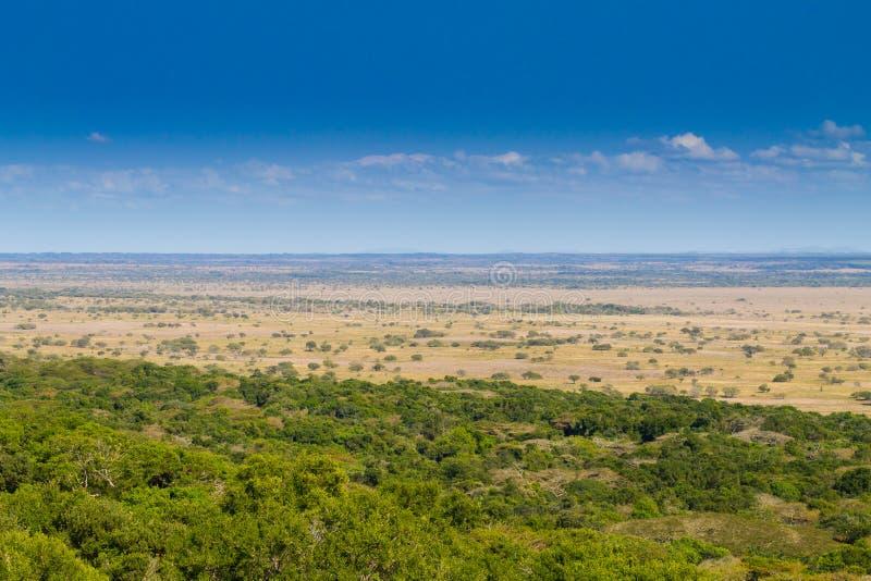 Isimangaliso våtmark parkerar landskap royaltyfri bild