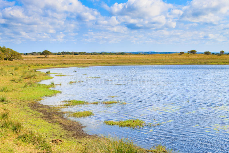 Isimangaliso Wetland Park landscape royalty free stock photos