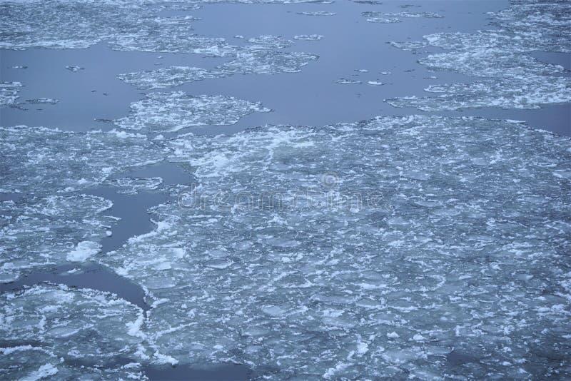 Iskalla isflak av fast vatten svävar ner floden som bryter på vägen arkivfoton