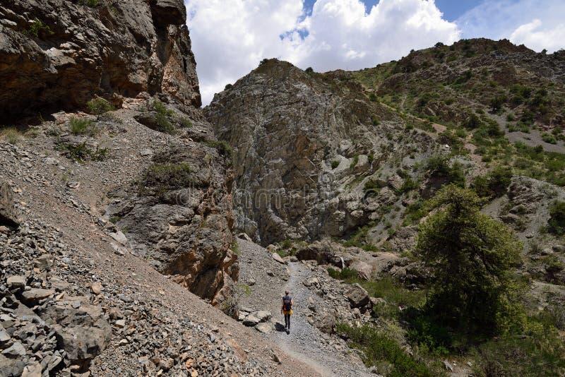 Iskander Ku, fan góry, Tajikistan obraz stock