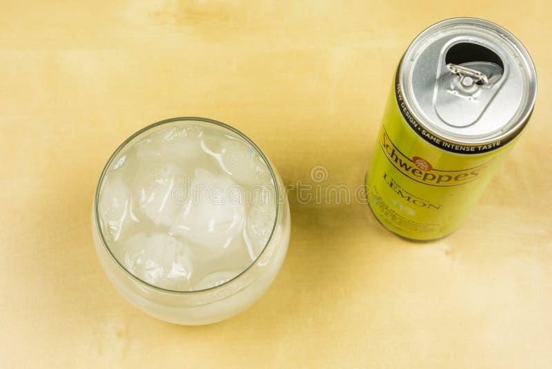 Iskuber i ett exponeringsglas med den Schweppes citronen ovanför sikt royaltyfri fotografi