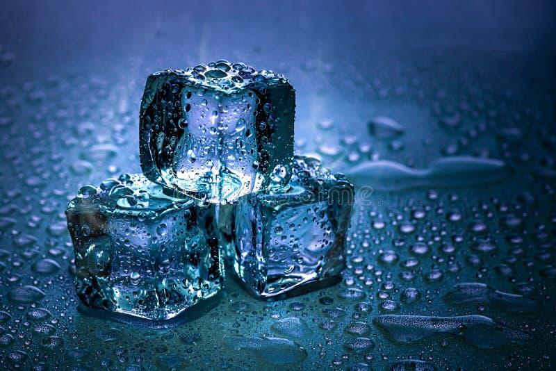Iskuber och vatten smälter på kall bakgrund Iskvarter med kalla drinkar eller drycken arkivfoton