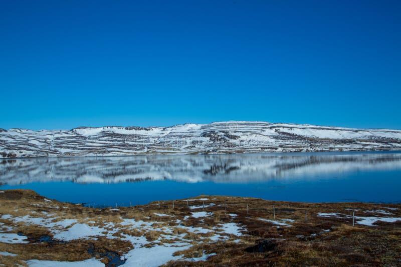 Isländischer Fjord wird im Wasser reflektiert lizenzfreie stockfotografie