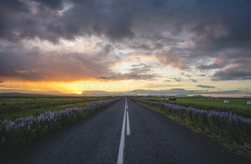 Isländsk väg royaltyfria bilder