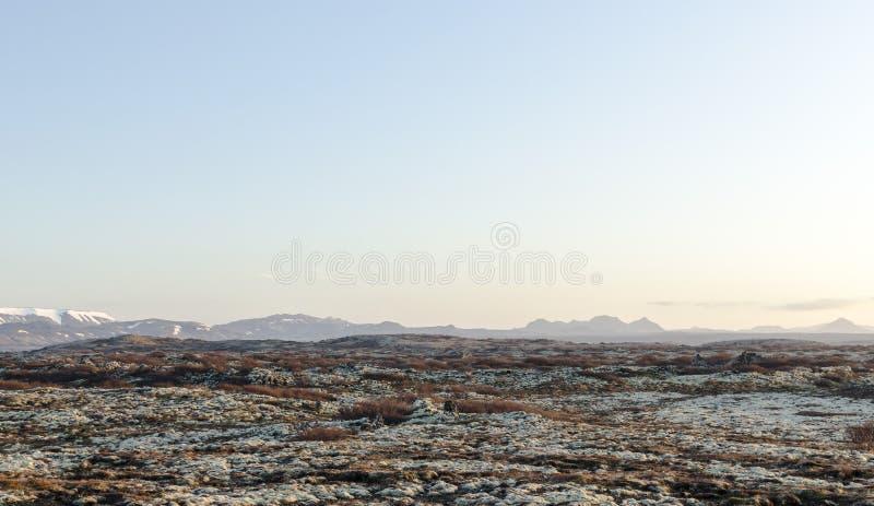 Isländskt landskap, vulkaniskt och härligt royaltyfria bilder