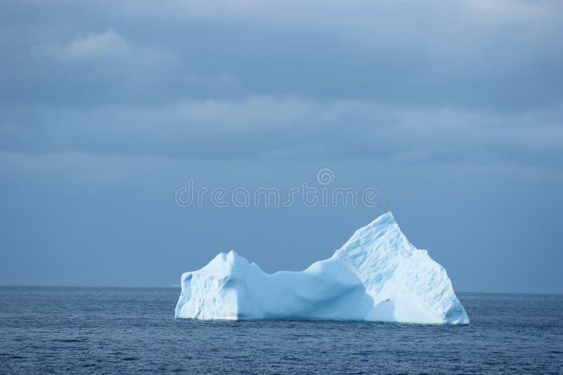 Isla antártica del hielo imagen de archivo
