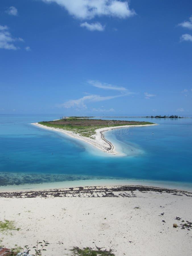 Isla blanca de la arena del tortuga de la playa seca de la Florida foto de archivo