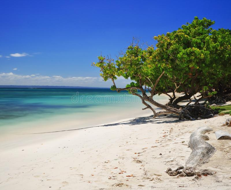 Isla caribeña foto de archivo