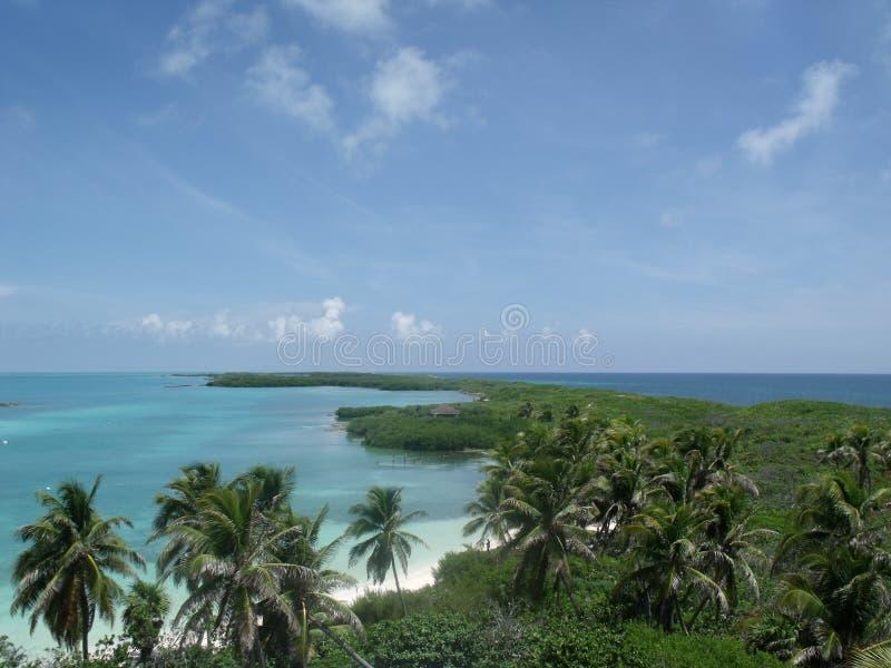 Isla Contoy - raj obraz royalty free