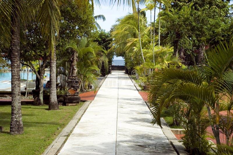 Isla de Bali, camino a varar imagenes de archivo