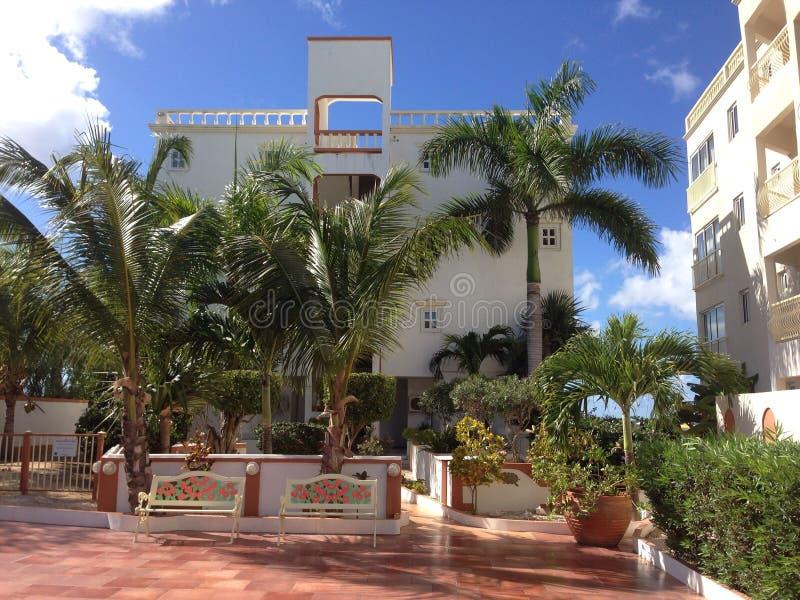 Isla de Bush de la palma del chalet del hotel exótica imagenes de archivo