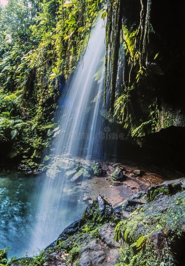 Isla de Dominica fotos de archivo