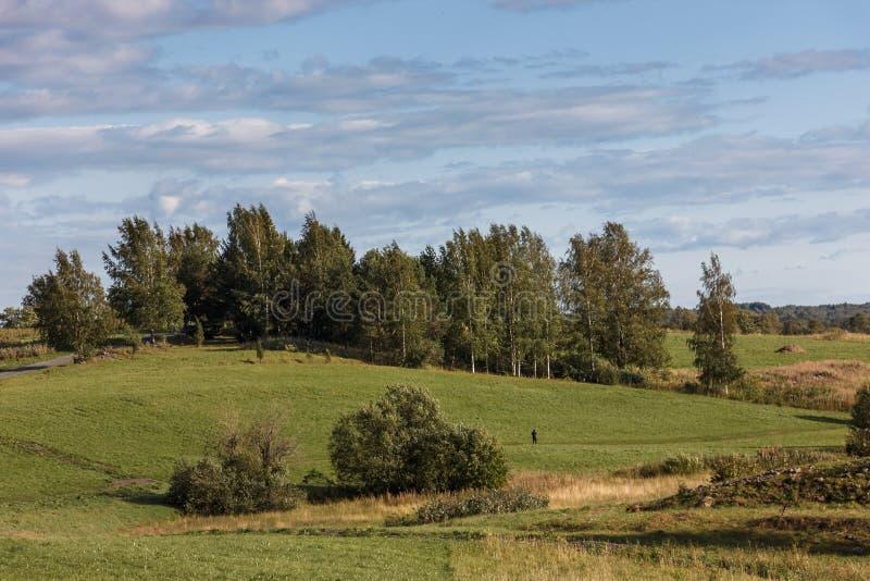 Isla de Kizhi, Petrozavodsk, Karelia, Federación Rusa - 20 de agosto de 2018: Arquitectura popular y la historia de la construcci fotografía de archivo libre de regalías